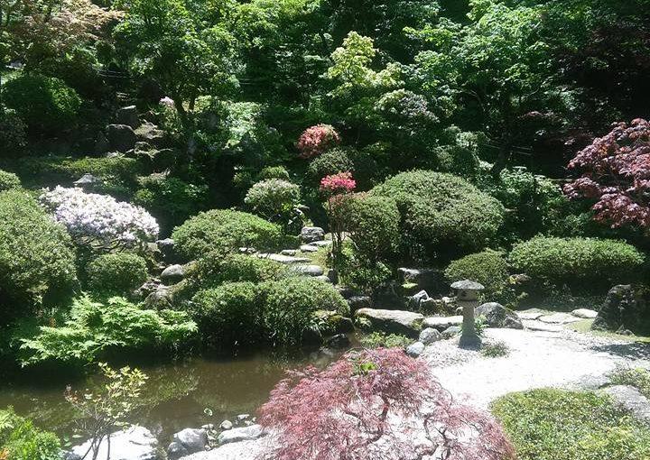 漢詩 五月十五日  新緑まさに滴たる好時節。