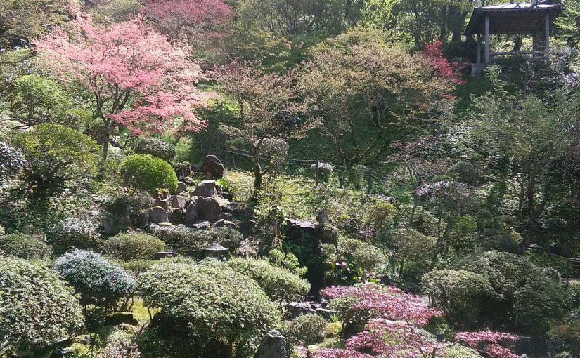 4月27日 庭園公開 春のイベント週間始まりです。 山サクラは咲くと散る 儚い花の命❗
