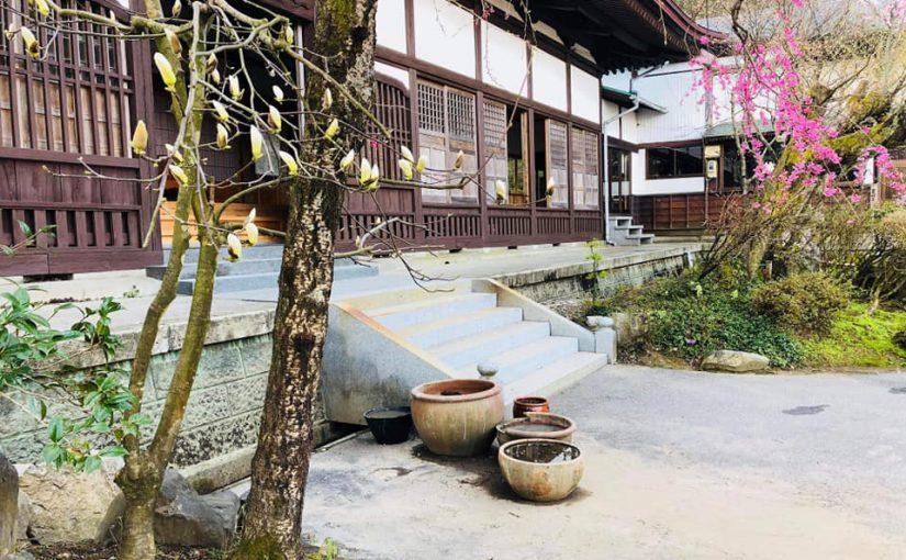漢詩 4月17日 昨日は蓮(蓮華)の植え替えを村の方がして下さいました。