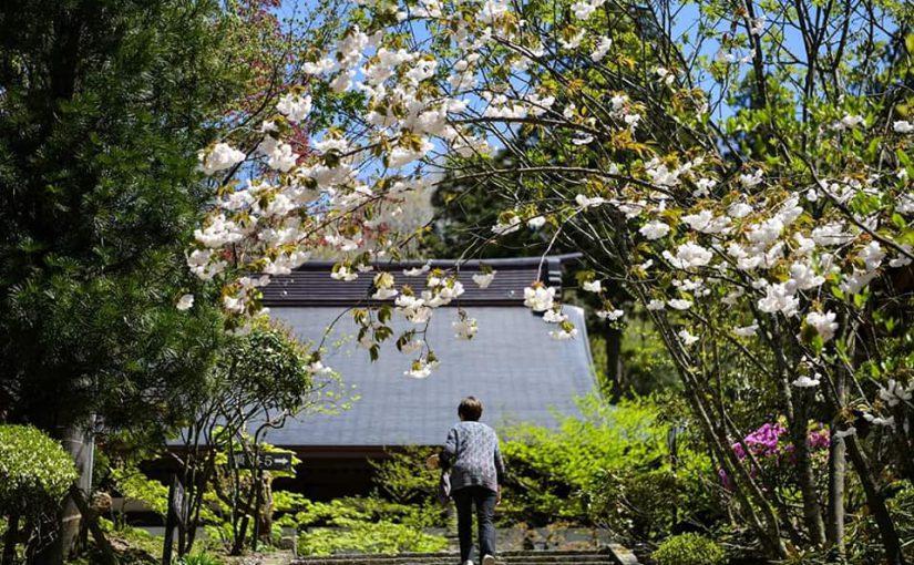 4月30日 四月三十日 平成最後の日が来ました。ー新潟村上 普済寺ー