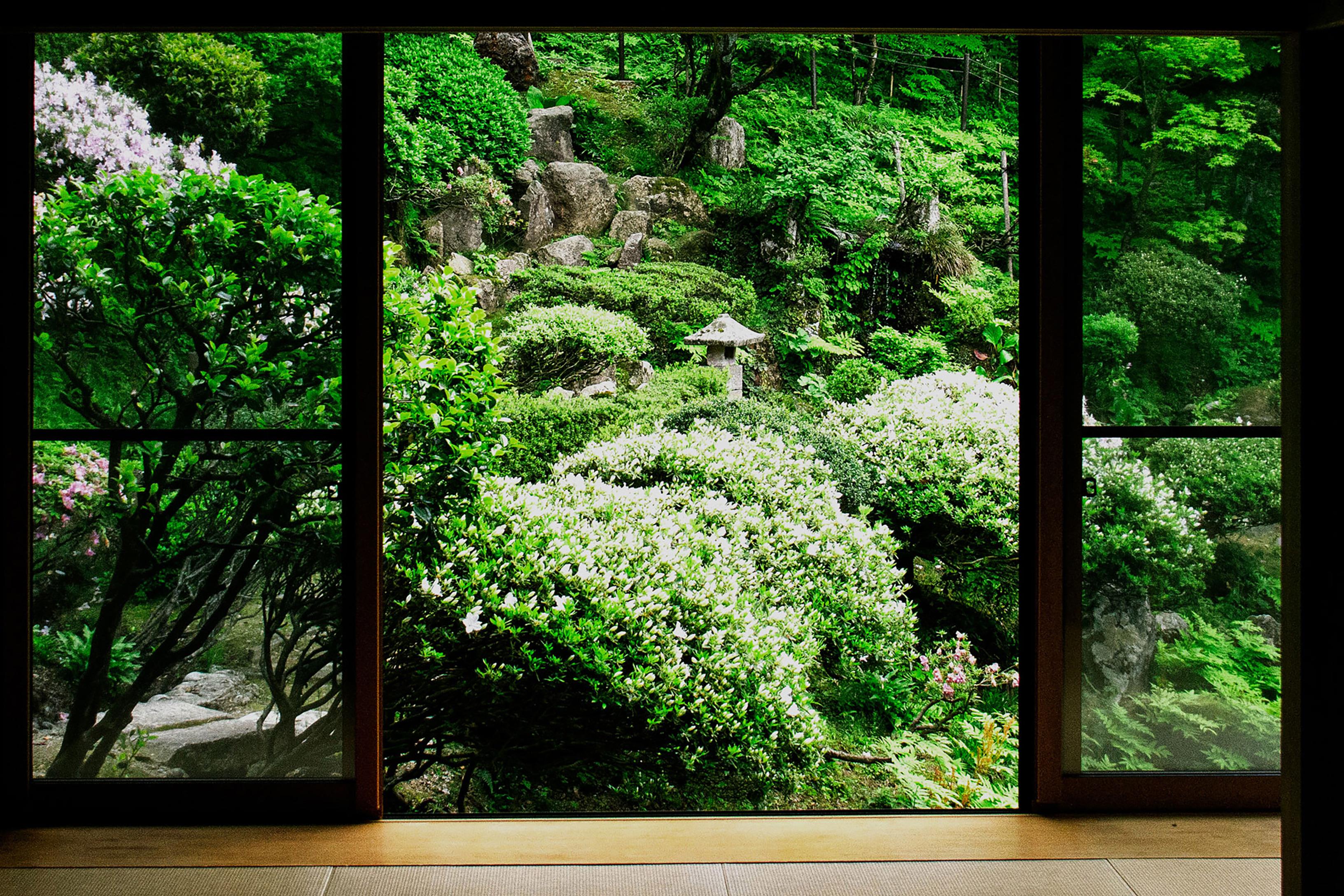 庭園1-1