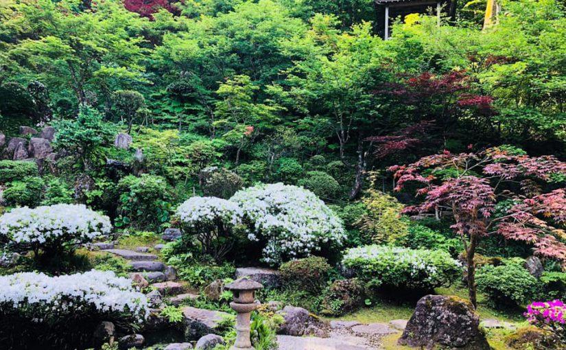 5月20日 またまた青天ですー新潟村上 普済寺ー 今朝二時間この辺りの草取りでした。