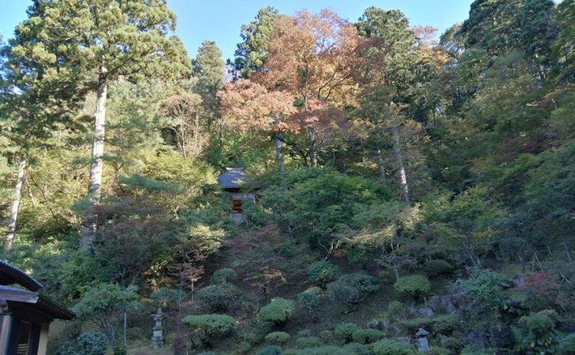 10月29日 秋になったからか毎日個人や団体の来客続き。今日は新潟交通(クレヨン)の観光客20人。1時間の滞在でした。
