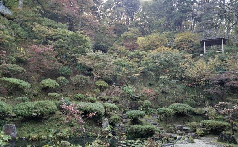 10月31日 これから新潟から十数名来訪があるのでお茶の準備。