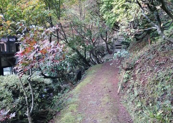 10月31日  朝6時から草刈り 8時より夕方5時まで応援7人 庭というか山というか 上から下まで掃除終わりました。写真枚数多いですがぐるーと一周です。
