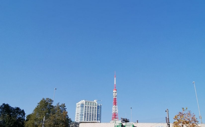 12月12日 お江戸は快晴。暖かい!