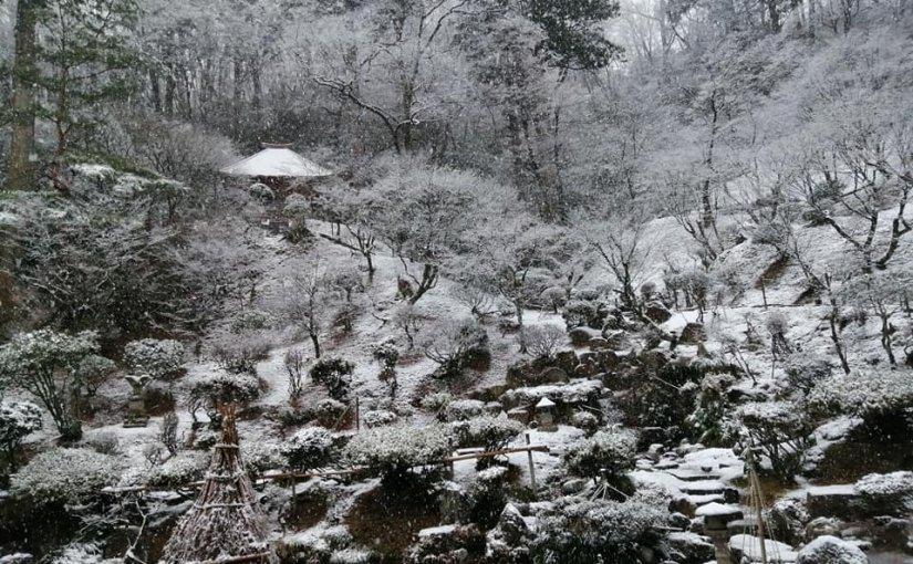 1月3日 正月三日雪になってます。
