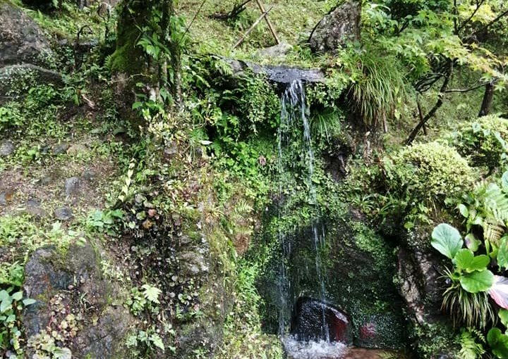 漢詩 7月29日 漢詩 滝からの水の音を聴いて