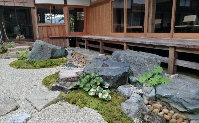10月10日 ツワブキが咲き始めています つくづく秋の風情です。 今日午後は新発田の普門寺で坐禅会です