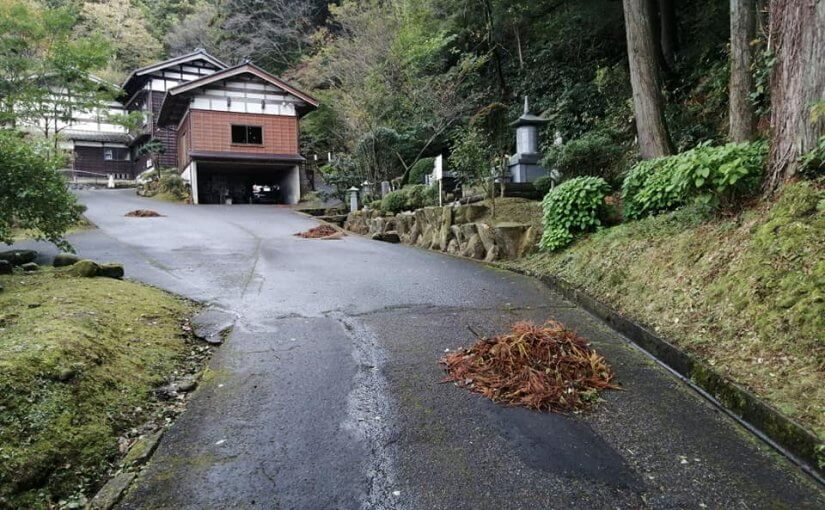 10月27日 これからは紅葉が見頃となります 皆様いらしてください。今日は福岡市からという方がこられました 。インターネットの何とかというサイトに紅葉の名所として普済寺が1番に出ていたとか