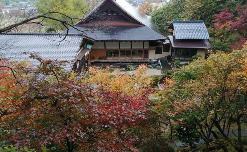 11月6日 普済寺庭園の紅葉が見頃となっています。
