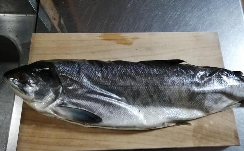 12月30日 オホーツクは北見枝幸のメジカ鮭です 毎年友達のお寺から送ってきます
