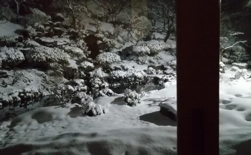 12月30日 小雪降ってましたが今は止んでいます。予報では年末年始は大雪とか。