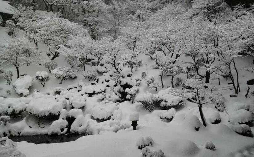 1月2日 正月二日 雪がズンズン積もっています 朝4時半に除雪車が来て長い参道と本堂前はキレイになってます。5時からの坐禅6時からの大般若のご祈禱