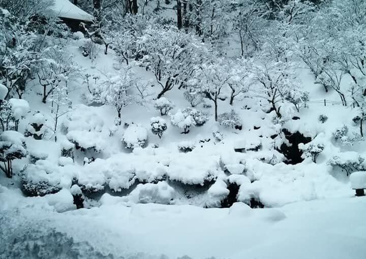 1月4日 1月下旬に観光バスで20人程の参拝観光客がある予定です。冬は何も有りませんよ と言いましたが雪が有るのがいいとの返事でした。