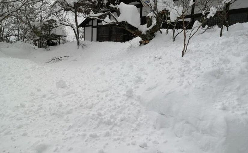 1月10日 大雪の所にお住まいの皆様くれぐれもお大事にお過ごし下さい。