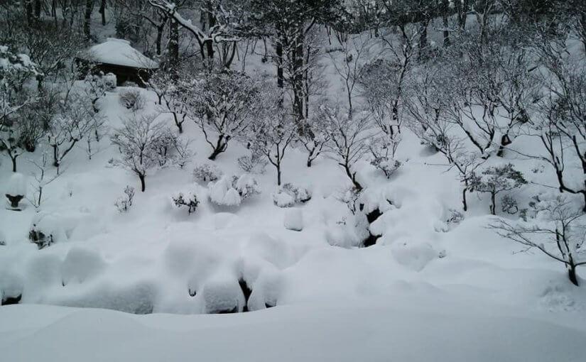 1月10日 これはもう歴史に残る令和三年豪雪ですね。