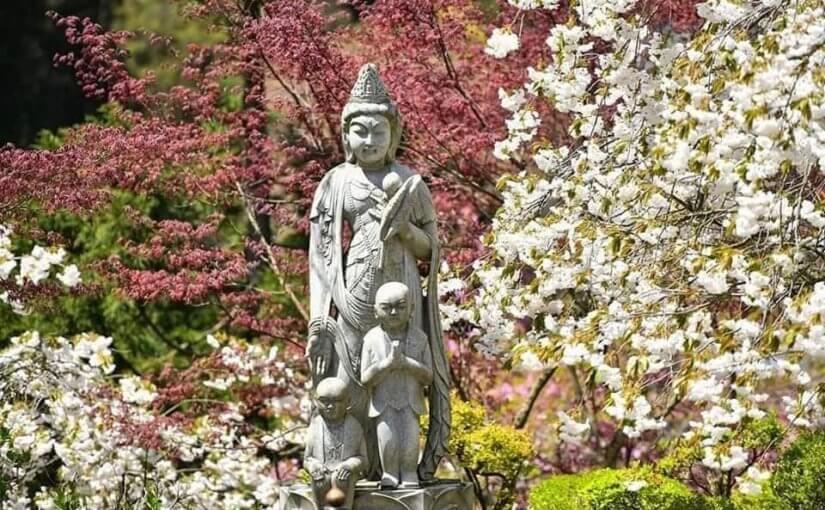 4月12日 新潟県村上市は快晴で穏やかで暖かい日となってます。 窓拭きしています。
