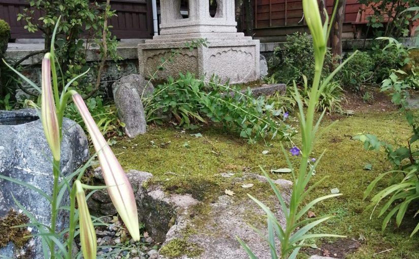 8月11日 お盆の11日 自宅で介護を受けておられた御婦人が八十八才で亡くなられました。コロナ禍の中 病院や施設でなく自宅で見送ることが出来たのは せめても幸いなことでした。体育の教師として市内の中学校で教鞭をとり同じ教師の夫君とは東京での学生時代の出合いからとのこと東京の出身で遠く新潟へ来られて 60年余ご苦労も並み大抵なことでなかったかと拝察いたします。